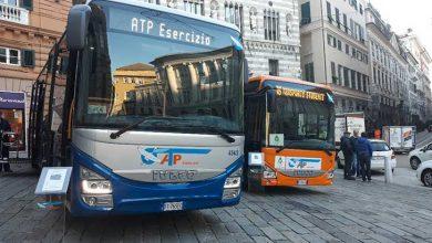 Photo of Atp, arrivano a gennaio 40 nuovi bus: 10 dotati di pedana per disabili